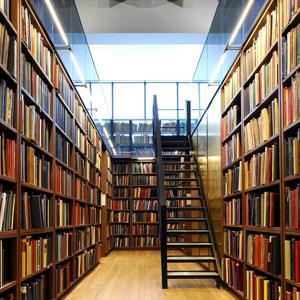 Библиотеки Калмыково